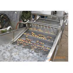 诸城天翔机械(多图)、果蔬清洗机电源电压、重庆市果蔬清洗机图片