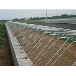 坤鹏温室(图)|钢构温室大棚设计|钢构温室大棚图片
