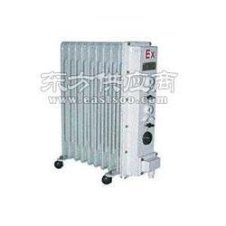 供应BDN58系列防爆电热油订,防爆油订,防爆油订图片