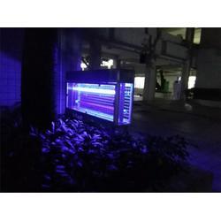 户外灭蚊灯-别墅花园户外灭蚊灯-大范围灭蚊虫(优质商家)图片