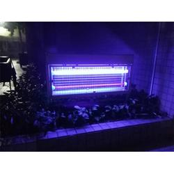 户外杀虫灯-花园户外杀虫灯-通透式双光源(优质商家)图片