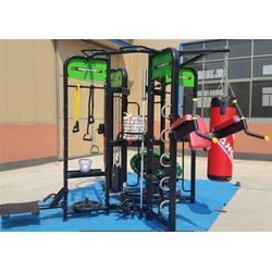 女士训练器材_大鲨鱼运动器材_女士训练器材健身图片