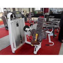 金瑞健身器材、健身器材、力健健身器材图片