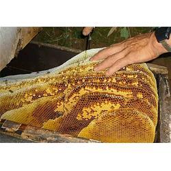 秦岭山脉农产品有口皆碑-土蜂蜜厂家-河源土蜂蜜图片
