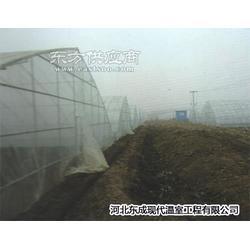 出售农业种植必不可少智能温室大棚图片