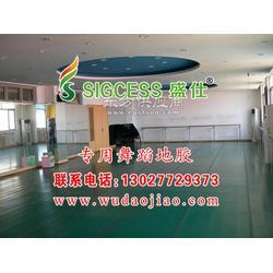 那里有卖舞蹈教室的地胶 舞蹈地板胶 舞蹈房专业地板胶 舞蹈教室用地胶 黑色舞台地胶图片