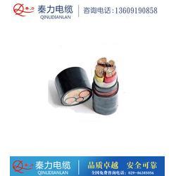 YJV22电力电缆_秦力电缆(在线咨询)_柞水电力电缆图片