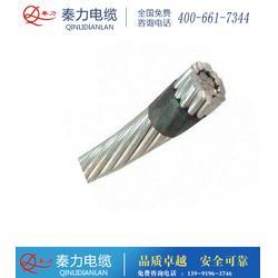 钢芯铝绞线lgjx、秦力电缆、朔州钢芯铝绞线图片