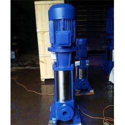 江西DL型多级泵-强盛泵业(优质商家)DL型多级泵图片