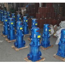 强盛泵业|DL系列多级泵供应商|内蒙古DL系列多级泵图片