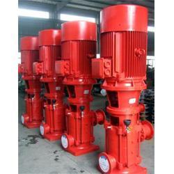 强盛泵业(多图)_DL型多级泵型号_江苏DL型多级泵图片