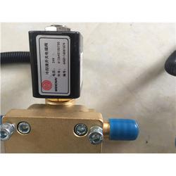 尿素泵电机E91DL-24_尿素泵_济南紫晖(图)图片