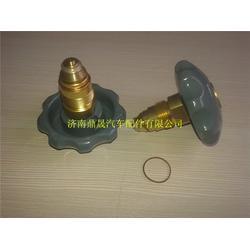 车载气瓶配件,济南紫晖,陕汽LNG车载气瓶配件图片