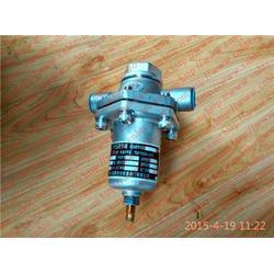 济南紫晖(图)、富瑞特装气瓶DYS-20C1、富瑞特装气瓶图片
