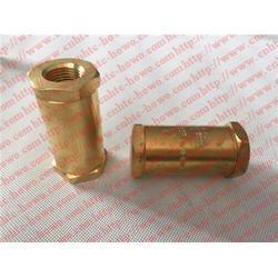 济南紫晖、德森气瓶、德森气瓶经济阀ECL140图片