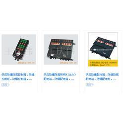 安能达防爆电器(图)、防爆配电箱型号、蓬莱 防爆配电箱图片