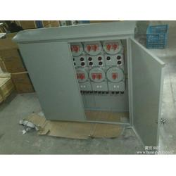 防爆配电箱型号|枣庄 防爆配电箱|安能达防爆电器(查看)图片