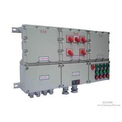 安能达防爆电器(图)、防爆配电箱材质、聊城防爆配电箱图片