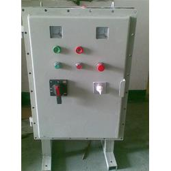 安能达防爆电器|肥城防爆配电箱|防爆配电箱动力图片