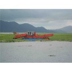 海天机械(图),绞刀式割草船,德宏割草船图片