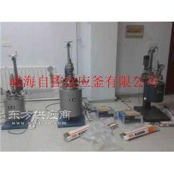 化工设备自控反应釜(图), 高压反应釜,高压反应釜图片