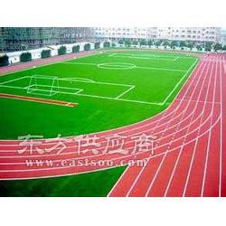 龍巖塑胶篮球场施工厂家图片