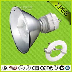 供应厂家直销星普工矿灯 无极工矿灯 厂房照明专用灯具 室内运动场照明专用灯图片