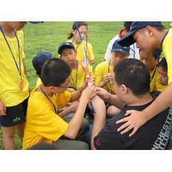 童子军训练营 森众拓展(在线咨询) 周村童子军图片