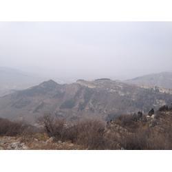 淄博攀岩技术,森众拓展(在线咨询),青岛攀岩技术图片