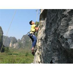 攀岩装备有哪些、森众拓展(在线咨询)、临淄攀岩装备图片
