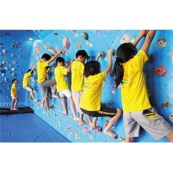 森众拓展(图)、儿童攀岩鞋、淄川儿童攀岩图片