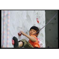 室内卡通攀岩设备|高青攀岩设备|森众拓展图片
