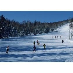 青岛滑雪场,滑雪场雪道,森众拓展(优质商家)图片