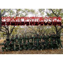 拓展训练项目,森众拓展,临淄拓展训练图片