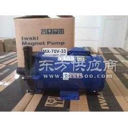 易威奇磁力泵MD-100RM低价上市图片