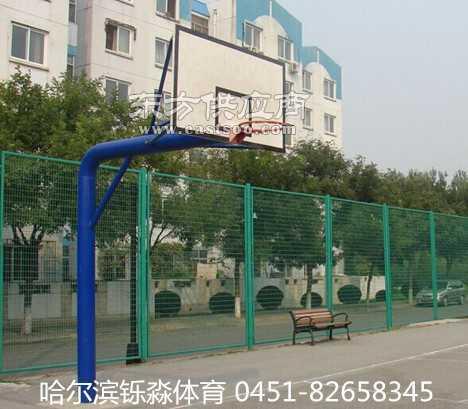 学校单柱式篮球架-圆管地埋式篮球架供应商