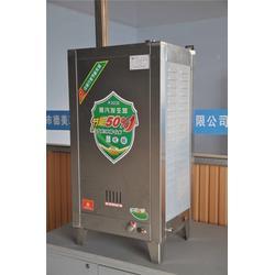 德美工贸|永川蒸汽发生器|燃气 蒸汽发生器图片