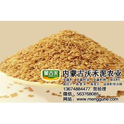 保定金色亚麻籽-金色亚麻籽养生-加拿大金色亚麻籽图片