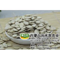 出口级南瓜子公司-阳泉出口级南瓜子-内蒙古沃禾泥农业图片