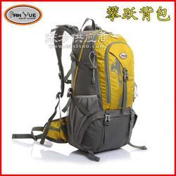 包包贴牌背包厂家攀跃大型背包30至50L报价图片