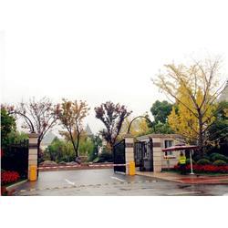 广州金顺、智能停车场管理系统、中山智能停车场图片