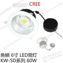 LED筒灯60度 90度 120度 7米8米开孔170mm 筒灯图片