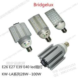 E40路灯28W 30W 40W 60W 80W 100W 120W LED路灯源头厂家图片