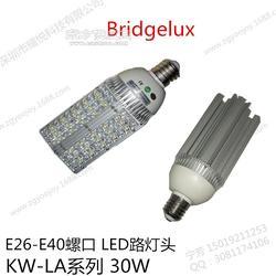单面LED玉米灯图片