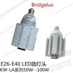 80W E27 LED路灯图片