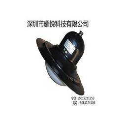 黑色LED庭院灯20W图片