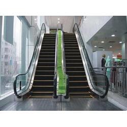 自动扶梯维修、诺亚威特电梯(在线咨询)、阳信县自动扶梯图片