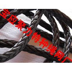 厂家专业供应高强度绞盘绳,图片