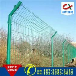 淮南铁丝网|军事铁丝网|绿色防护铁丝网图片