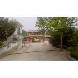 新泰生态园,金凤岭,农庄生态园图片